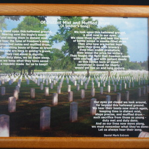 Of Distant Mist and Muffled Drum:  To Honor Fallen Soldiers  BrownFrame 10 by 8 inches Photo