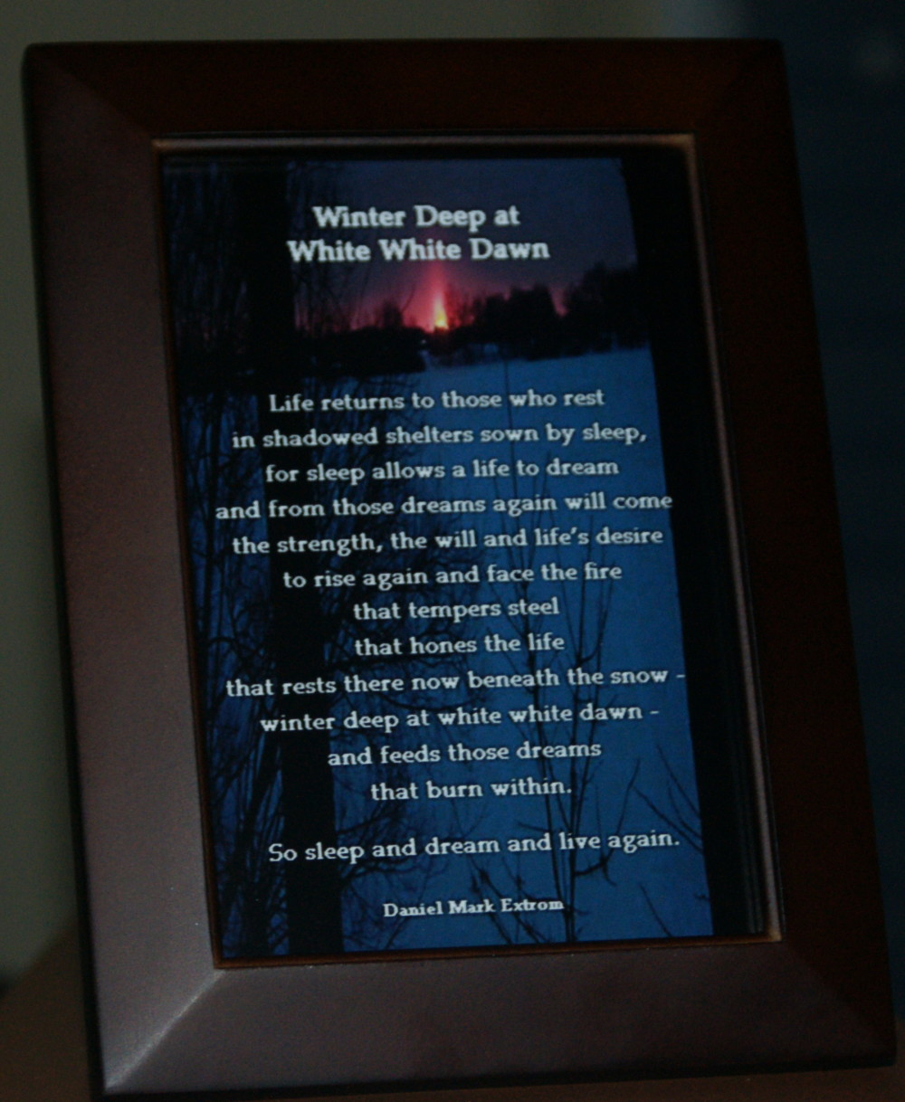 Winter Deep Brown Frame 4x6 Life Returns V2