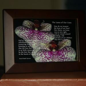Loves of Our Lives. V3. Brown Frame. 6x4. Orchids.