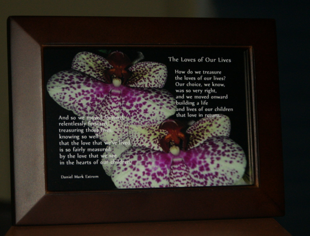 Loves of Our Lives. V3. Brown Frame. 6x4. Orchids.