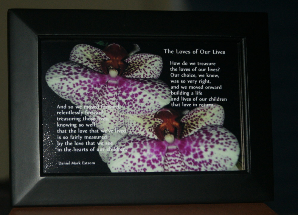 Loves of Our Lives V3 Black Frame 6x4 Orchids Children