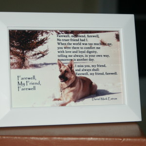 Farewell, My Friend White Frame 6x4 inches